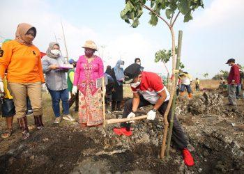 Wakil Wali Kota Surabaya Armuji menanam pohon kemiri sunan di green belt Tempat Pembuangan Akhir (TPA) sampah Benowo Surabaya, Sabtu (11/6) lalu.