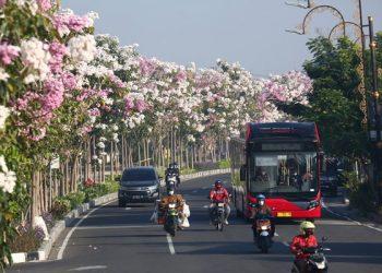 Berbagat terobosan dilakukan Pemkot Surabaya di bidang lingkungan hidup. Baru-baru ini Kota Surabaya mendapat penghargaan ASEAN Environtmentally Sustainable City (ESC) kategori udara terbersih kota besar.